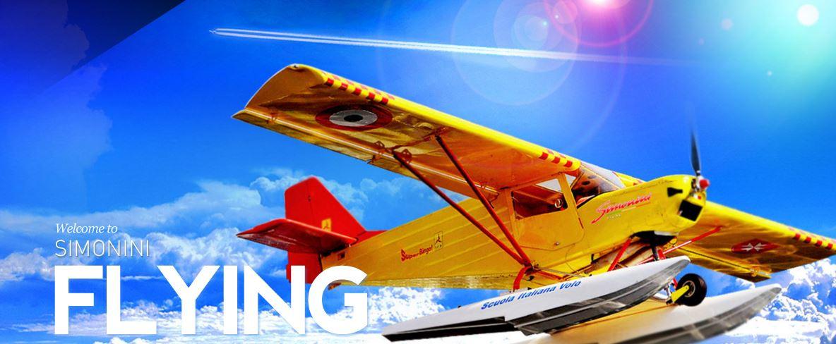 aerolight simonini,